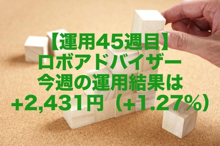 【運用45週目】ロボアドバイザー今週の運用結果は+2,431円(+1.27%)