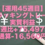 【運用45週目】トラッキングトレードの実質利益は前週比+75,497円、通算-16,560円