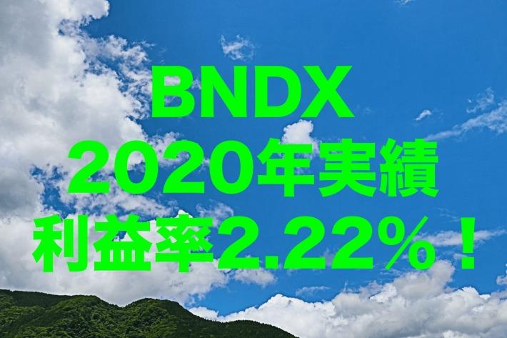 利益率2.22%!2020年のBNDX(バンガード・トータル・インターナショナル債券 ETF)運用実績