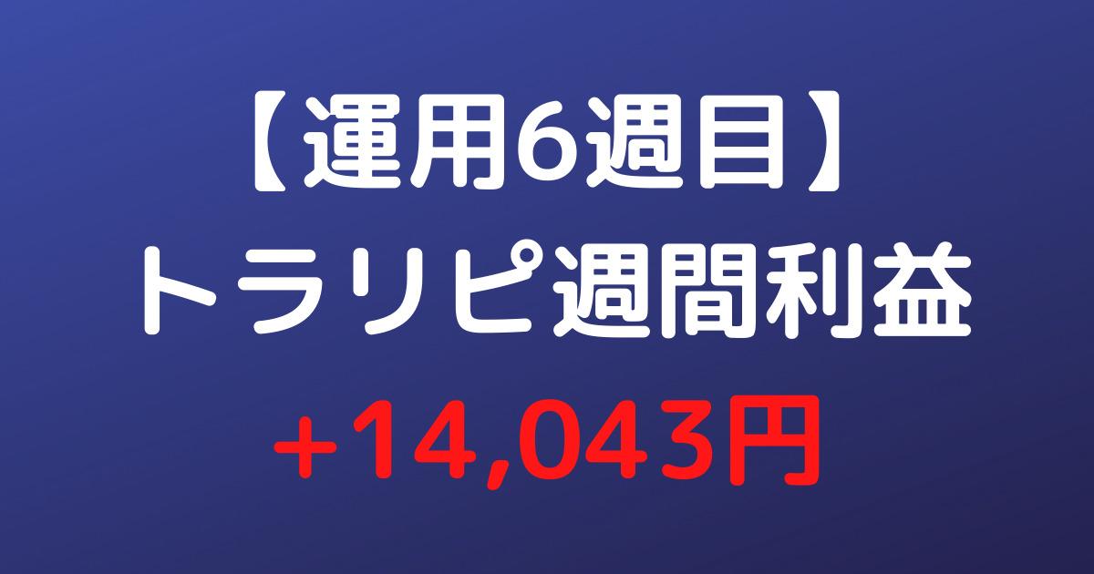 【運用6週目】トラリピ週間利益+14,043円