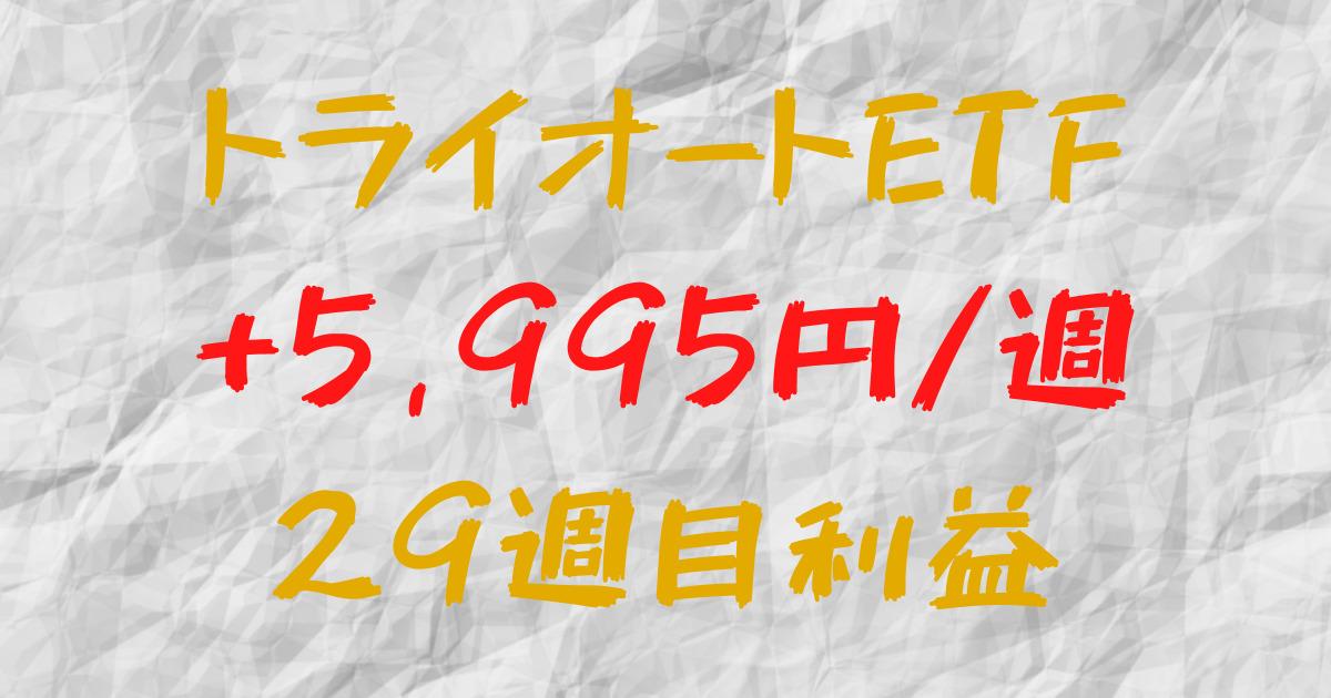 トライオートETF 週間利益+5,995円(29週目)